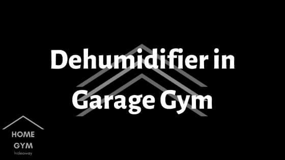 Dehumidifier in Garage Gym